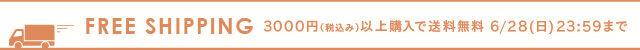 3000円(税込み)以上送料無料